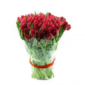 Букет из 95 Тюльпанов