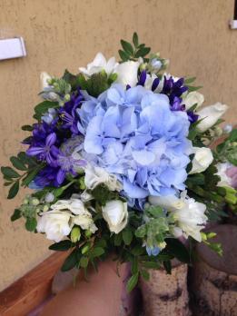 Букет из брунии, твидии , гортензии, фрезии, розы кения, агапантуса