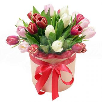 Коробочка из 23 тюльпанов