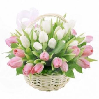 Корзина из 25 Тюльпанов