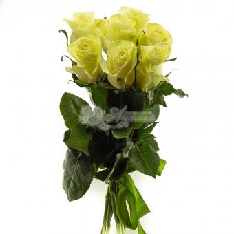Букет из 7 белых Эквадорских роз