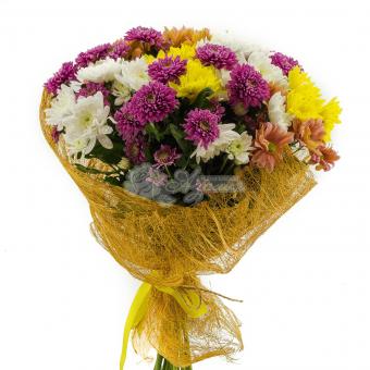 Букет из 19 кустовых разноцветных хризантем